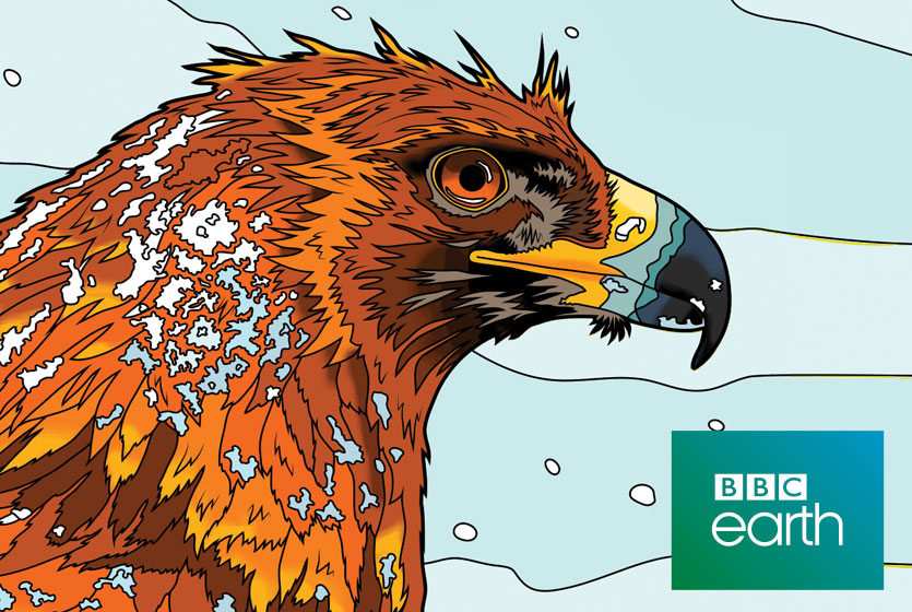 bbc_earth_colouring